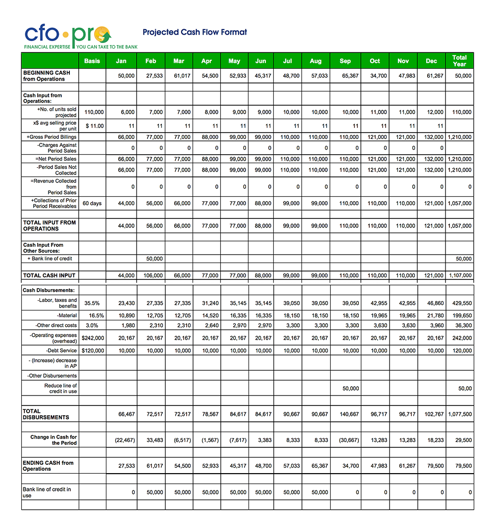 Cash Flow Projections Template by CFO-Pro.com